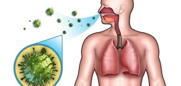صورة جديد عمل الجهاز التنفسي