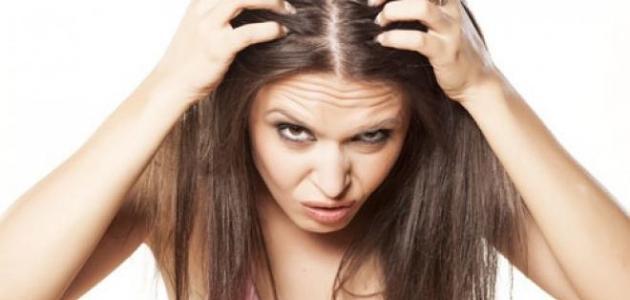 صورة جديد الشعر الخفيف
