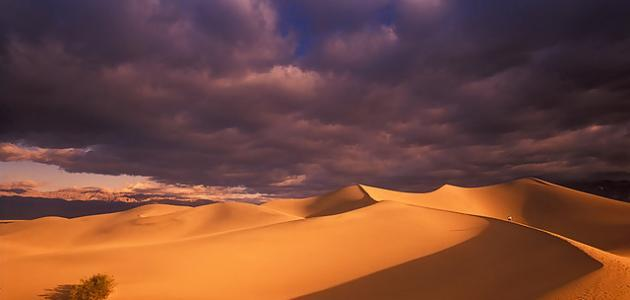 صورة جديد ما هي الصحراء