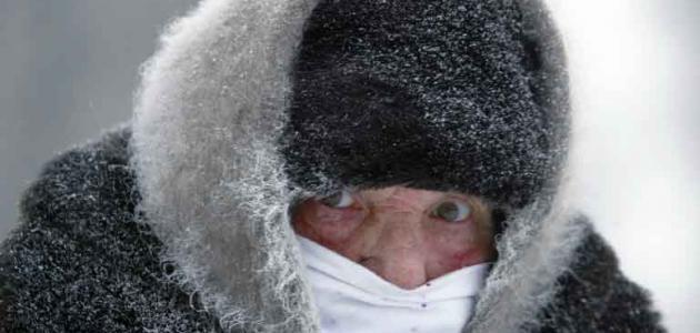 صورة جديد أضرار البرد