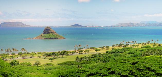 صورة جديد معلومات عن جزر هاواي