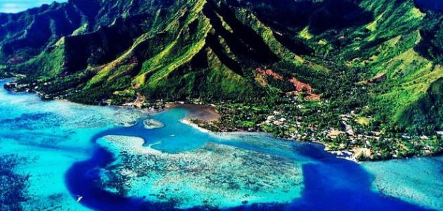صورة جديد جزر الكاريبي