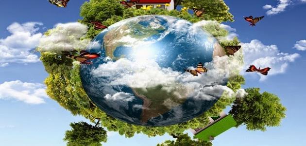 صورة جديد مفهوم البيئة والنظام البيئي