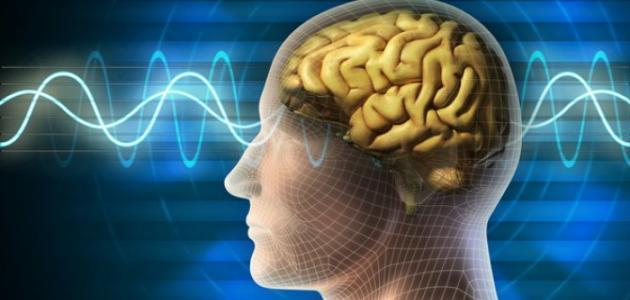 صورة جديد ما هو علاج الاستسقاء الدماغي – فيديو