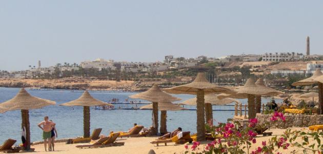 صورة جديد مدينة شرم الشيخ