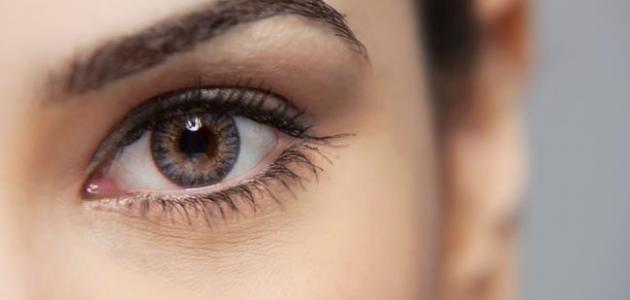 صورة جديد المحافظة على العين