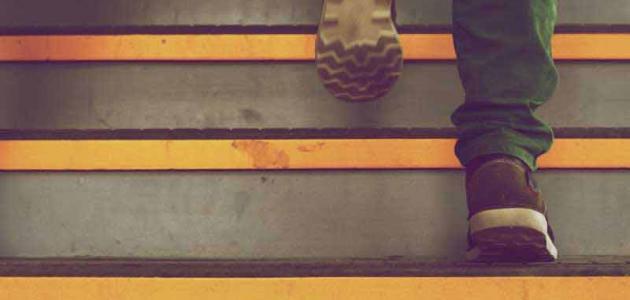 صورة جديد فوائد صعود ونزول الدرج