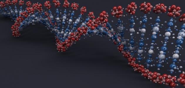 صورة جديد ما هو عدد الكروموسومات في جسم الإنسان