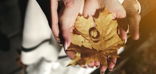 صورة جديد تعريف الزواج لغة وشرعاً
