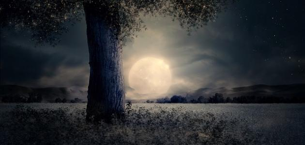 صورة جديد كلام عن ضوء القمر