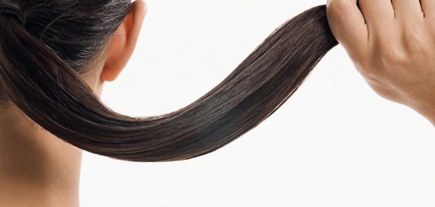 صورة جديد إطالة الشعر بسرعة كبيرة