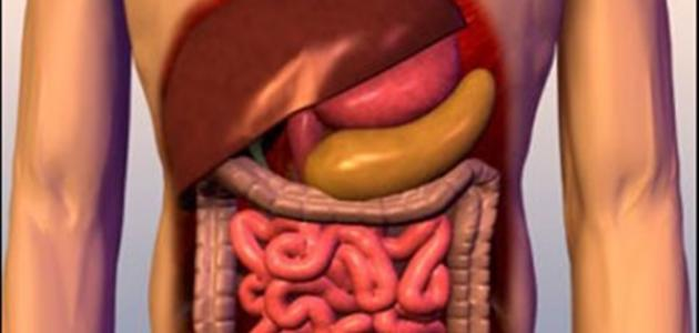 صورة جديد ما هي أعراض صفار الكبد