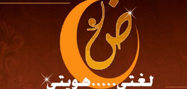 صورة جديد عبارات قصيرة عن اللغة العربية
