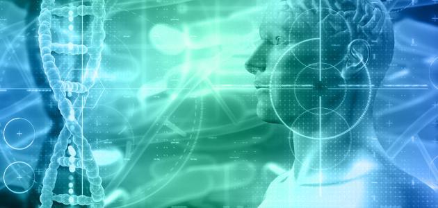 صورة جديد تصنيف الإنسان في علم الأحياء