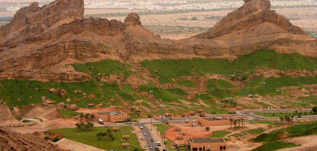 صورة جديد جبل علي بدبي