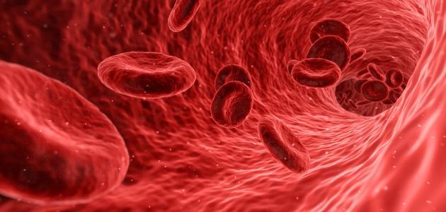 صورة جديد تحليل تجلط الدم