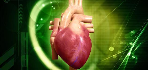 صورة جديد ما هي أعراض ضعف عضلة القلب