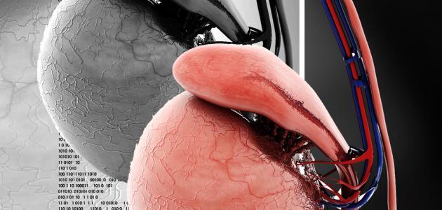 صورة جديد أعراض تضخم البروستاتا