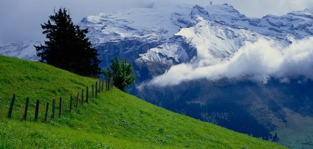 صورة جديد الطبيعة في سويسرا
