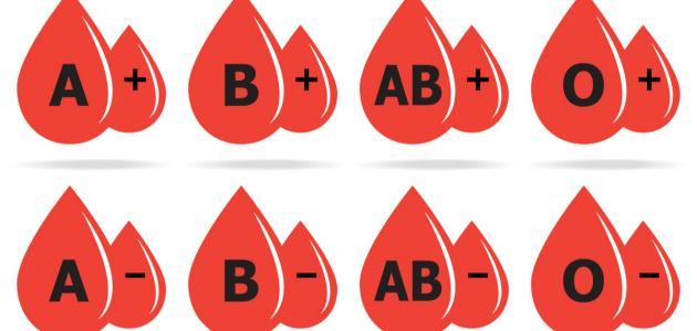 صورة جديد ما هي أندر فصيلة دم