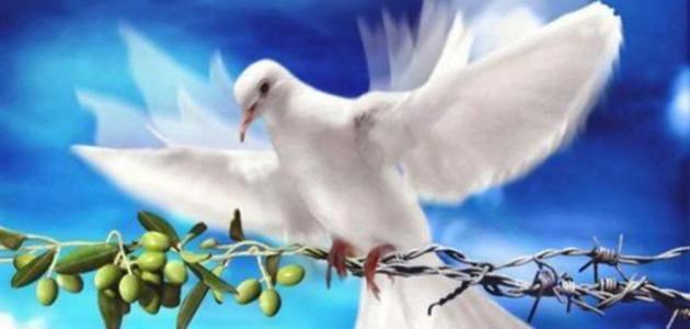 صورة جديد تعريف السلم والسلام