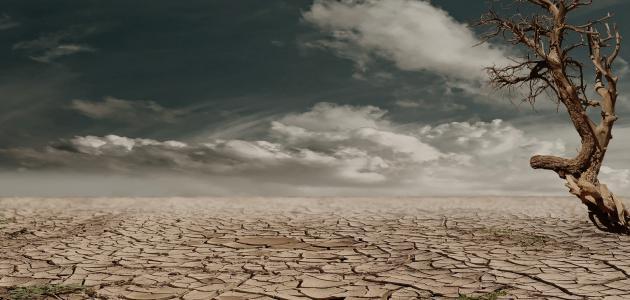 صورة جديد ما معنى الجفاف
