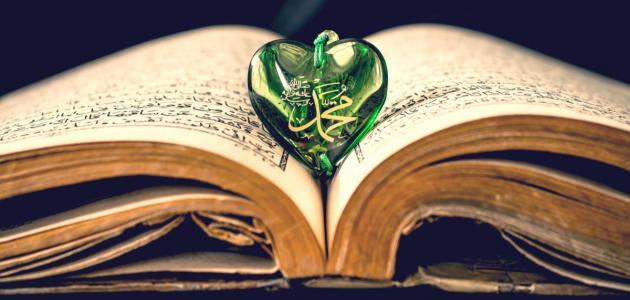 صورة جديد كيف يكون حب الرسول