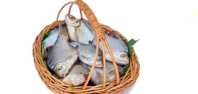 صورة جديد فوائد السمك