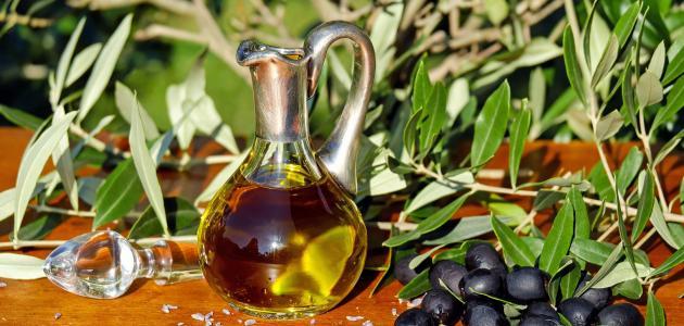 صورة جديد فوائد شجرة الزيتون وزيتها