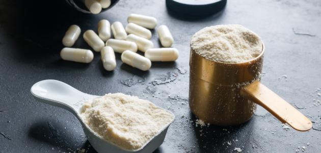 صورة جديد مسحوق البروتين لزيادة الوزن