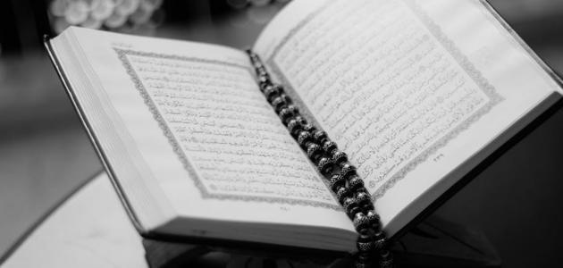 صورة جديد أحاديث في فضل القرآن