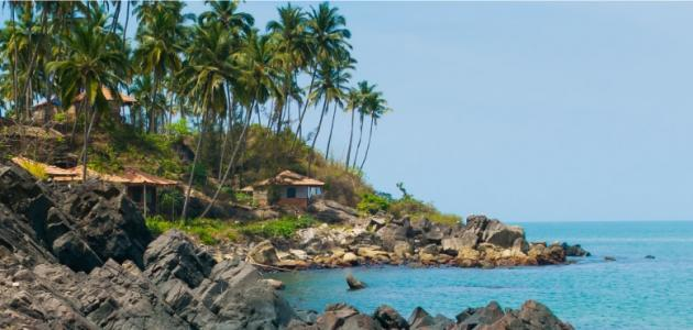 صورة جديد مدينة غوا