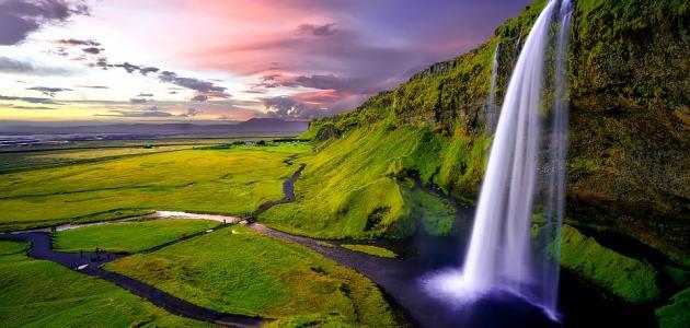 صورة جديد كيف تكون جنة الفردوس