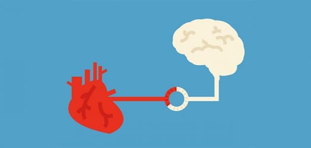 صورة جديد هل هناك علاقة بين الفكر والعواطف