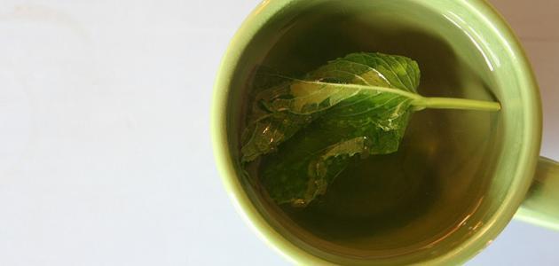 صورة جديد فوائد شاي الأخضر بالنعناع
