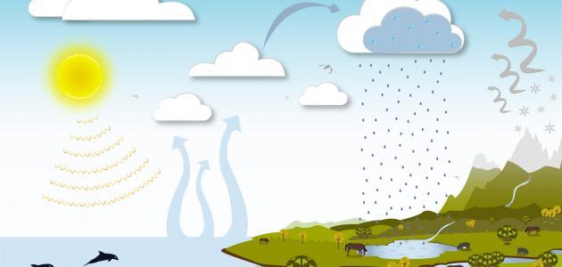 صورة جديد دورة الماء في الطبيعة