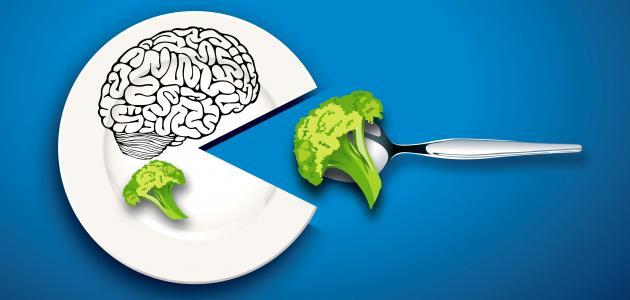 صورة جديد ما هو الغذاء الرئيسي للدماغ