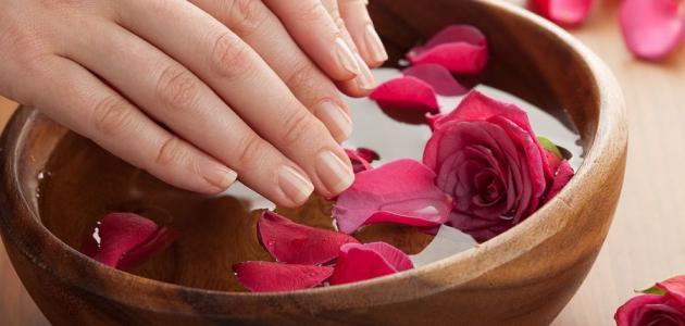 صورة جديد فوائد ماء الورد للشعر