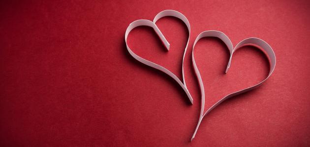 صورة جديد ما هو أساس الحب