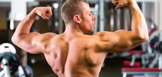 صورة جديد تقوية عضلات الظهر