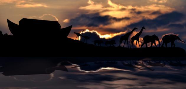 صورة جديد بحث عن سيدنا نوح عليه السلام