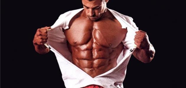 صورة جديد عضلات الجسم وكيفية المحافظة عليها قوية