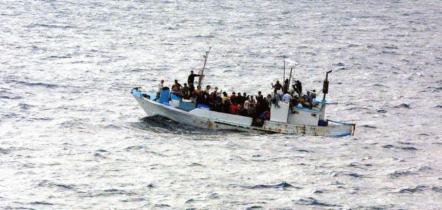 صورة جديد أضرار الهجرة