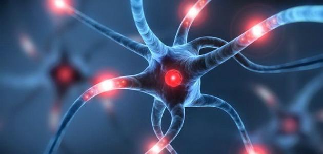 صورة ما هي أعراض الكهرباء الزائدة فى المخ
