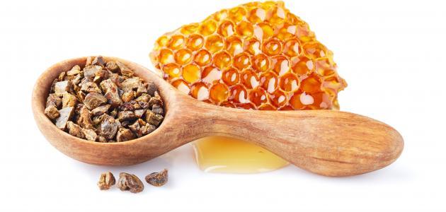 صورة ما هي فوائد عكبر النحل