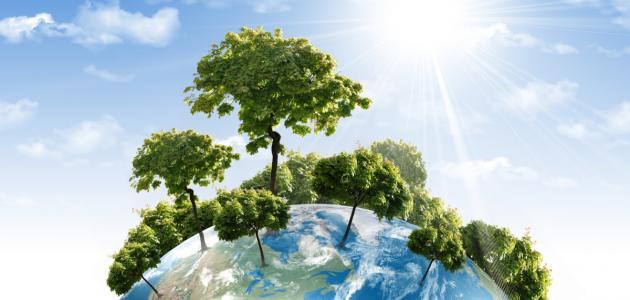 صورة عناصر البيئة ومكوناتها