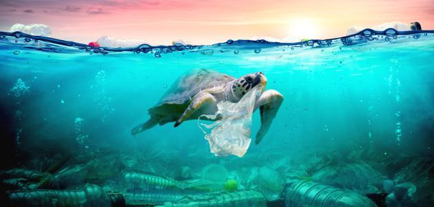 صورة كيف نحافظ على البيئة من التلوث