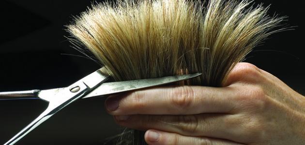 صورة طرق علاج تساقط الشعر وتقصفه