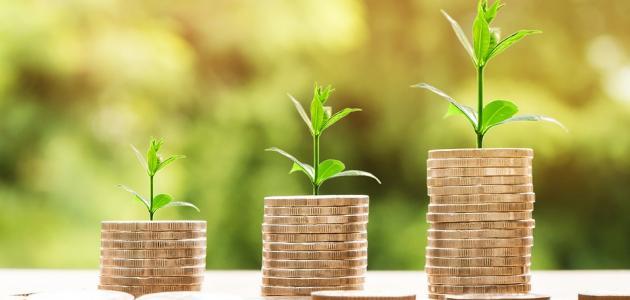 صورة صناديق الاستثمار وشركات إدارة الأموال