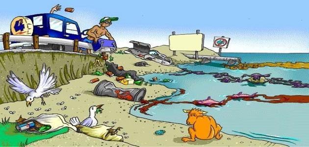 صورة ما هي مصادر تلوث الماء